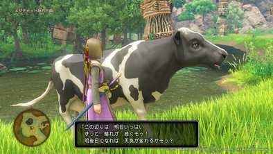 メダチャット地方の牛の場所画像1