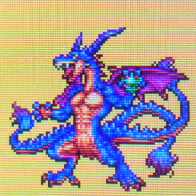シドードラゴンの画像