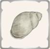 砂場の巻貝の画像