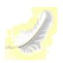 高級な羽の画像