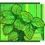 治緑草の画像