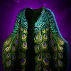 孔雀袍の画像