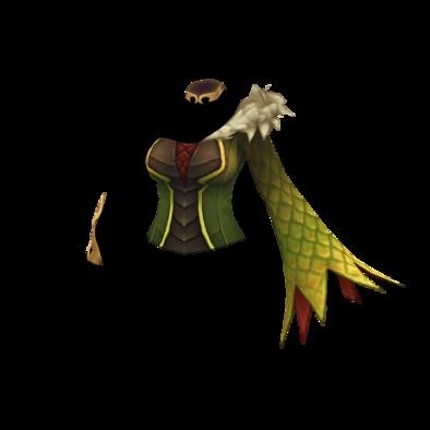 滅竜の服の画像