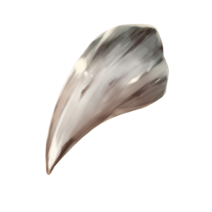 魔獣の牙の画像