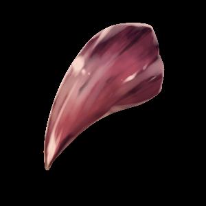 猛獣の牙の画像