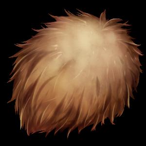 魔獣の毛皮の画像
