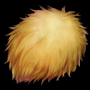 獣王の毛皮の画像
