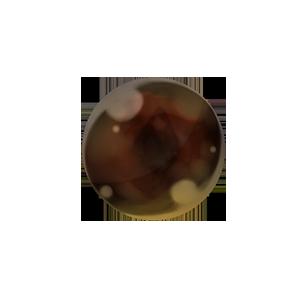 大地の小石の画像