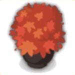 盆栽の画像