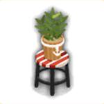 ユニオン盆栽の画像