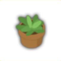 盆栽2の画像