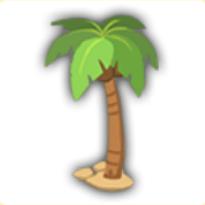 ココナッツの木の画像