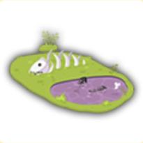 ドクの沼の画像