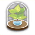 植物の標本の画像