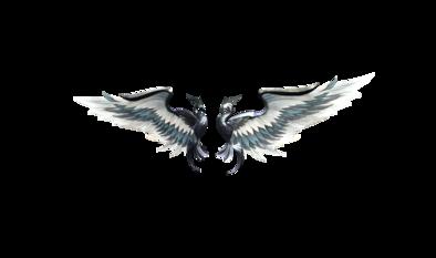 ヘルの鳥翼の画像