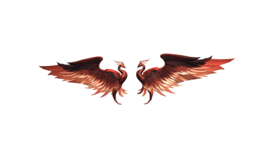 ドゥンケルの鳥翼の画像
