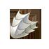 ボロボロの殻の画像