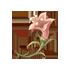 荒々しいトゲ花の画像