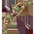 生気の弓の画像