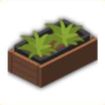 植物のプランターの画像