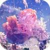 陸珊瑚の台地