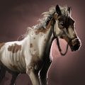 幻想脳の馬の画像