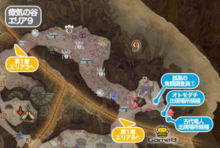 瘴気の谷エリア9のマップ