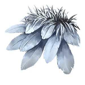 死灰の羽飾りの画像
