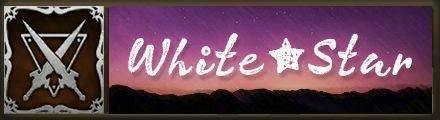 ホワイトスターバナー画像.jpg