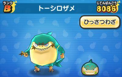 トーシロザメ.jpg