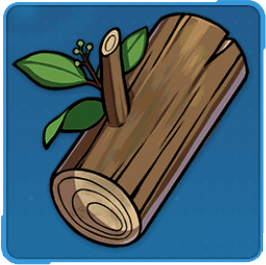 樟の木材の画像
