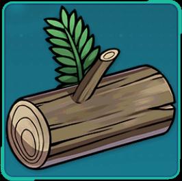 杉の木材の画像