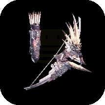 Nergal Whisper Bow Image