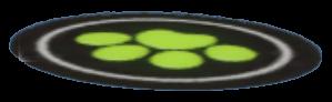 黒猫絨毯の画像