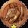 ガーゴイルメダルの画像