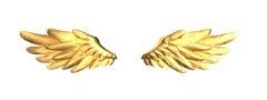 愛天使の羽(黄金)の画像