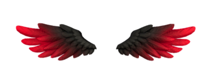愛天使の羽(紅蓮)の画像