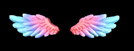 愛天使の羽(虹)の画像
