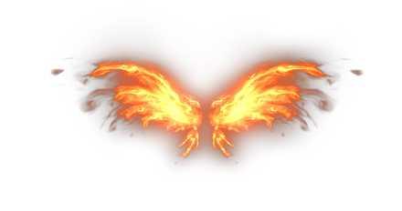 ガーベの翼の画像