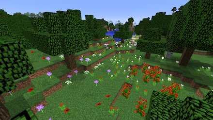 花の森画像