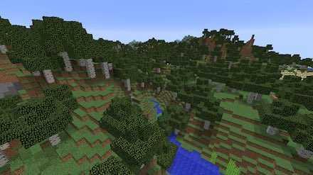 シラカバの森M画像