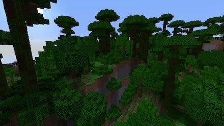 ジャングルM画像