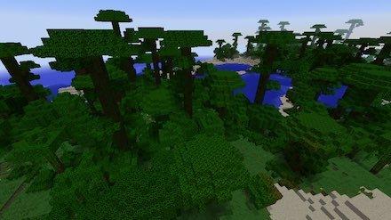 ジャングル画像