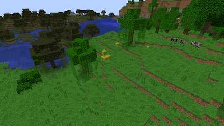 ジャングルの端画像
