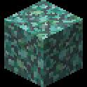 プリズマリンブロック画像