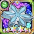 [盾舜六花の画像