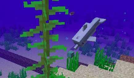 イルカ 消える マイクラ