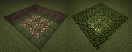 葉ブロック比較画像