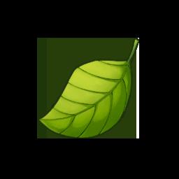 変化の葉の画像