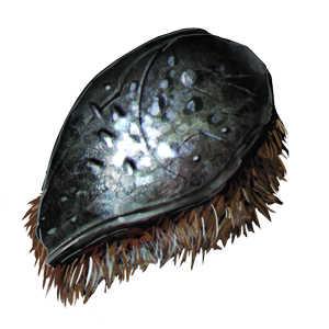 甲虫胸角の画像